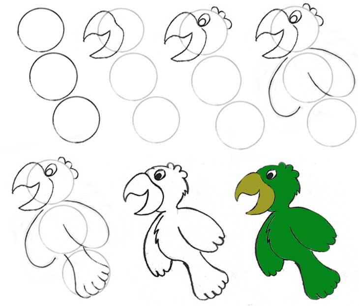 Top Divirta-se desenhando uma arara | ACESSA.com - Infantil PC01