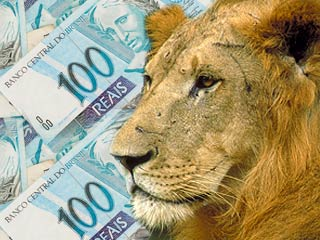 Dinheiro e Leão